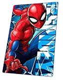 Manta polar de microfibra para niños, suave y acogedora, regalo (Spiderman)