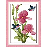 Cross Stitch Kits Stamped DIY 11CT Embroidery Patterns Needlepoint Kits for Adults, Cross-Stitch Kits for Home Decor-Flowers and Hummingbirds 9.5x14 inch