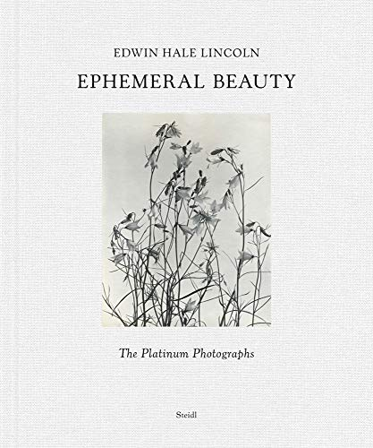 Edwin Hale Lincoln: Ephemeral Beauty: the Platinum Photographs