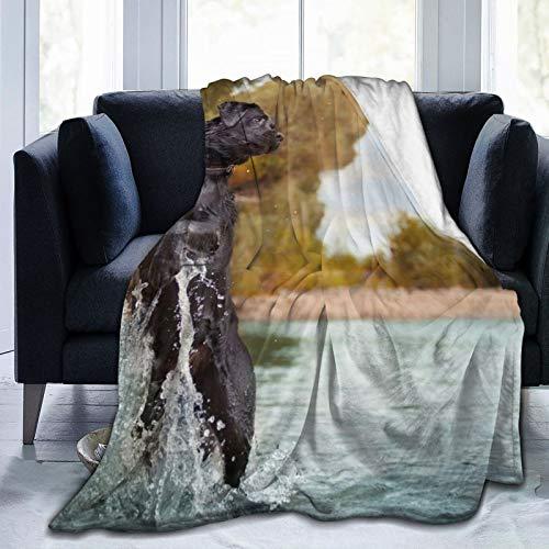 Perfect household goods Manta de forro polar de 127 x 152 cm, con rociador de agua para perro salto en casa, de franela suave y cálida manta de felpa para cama/sofá/oficina/camping