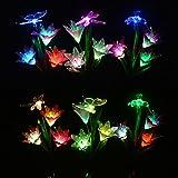 Luces Solares Decorativas para Exteriores, Luces de Jardín,...
