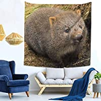 Cradle Mountain Wombat Mouse Tapestry Wall Hanging Multifunctiol Cloth Poster Decorative Wall Hanging Tapestry Fashion Wall Hanging Room Divider Wall Decor Home Living Room Bedroom Room Decor