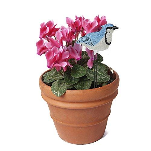 Plant Pal - Medidor de humedad para suelo con alarma cardenal, jilguero, canto de voz y bonsái, herramienta de prueba