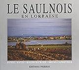 Le Saulnois : au pays du sel et de la Seille (French Edition)