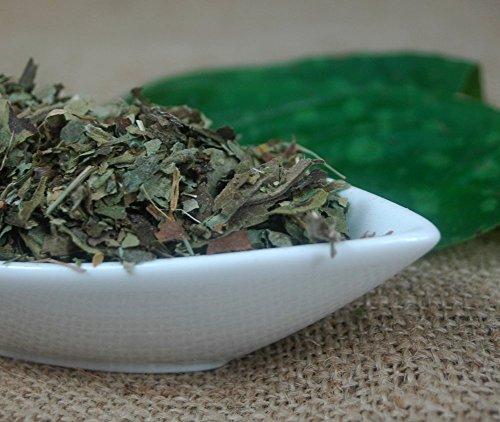 Naturix24 – Lungenkrauttee, Lungenkraut geschnitten – 500g-Beutel