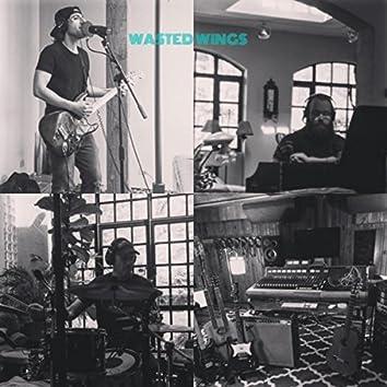 Wasted Wings (feat. Atticus Kelly & Glenn Grossman)