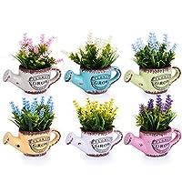 HIMETSUYA 観葉植物 人工植物 ミニ 植物鉢植え 枯れない 6点セット 室内 ホーム 庭 装饰