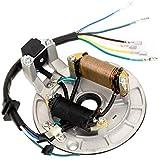 HIAORS 2 Coil Ignition Magneto Stator Plate for 70cc 90cc 110cc Taotao Kazuma Meerkat Mini Falcon 90 50 SSR Baja Coolster ATV Quad 125cc Peace Moto 4 Wheeler Kick Start Apollo SDG SSR 50cc Dirt Bike