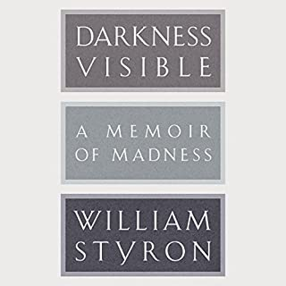 Darkness Visible cover art
