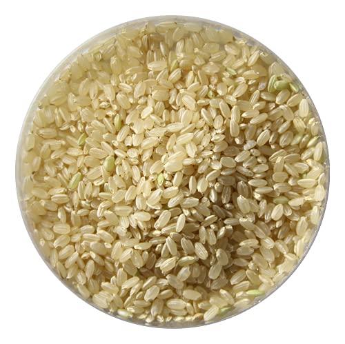 【令和元年産】あさひの夢玄米 10kg 無農薬・無化学肥料(動物性肥料不使用) 群馬県産・放射性物質検査済