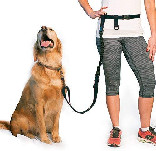The Buddy System Adjustable Hands Free Dog Leash for Running, Jogging and Training Service Dogs Made in USA (Regular ...