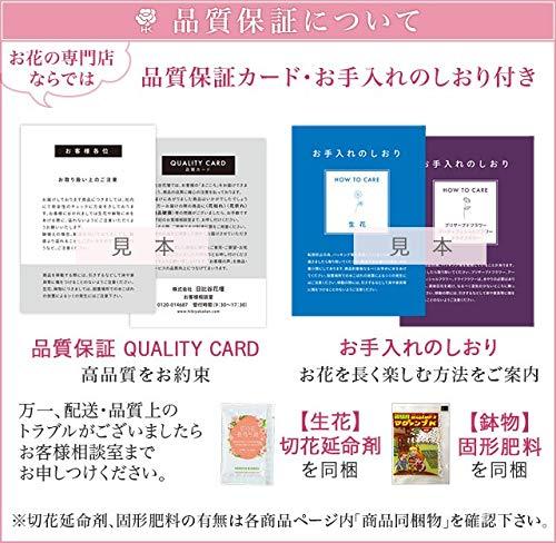 日比谷花壇『プリザーブド&アーティフィシャルアレンジメント吉祥鶴』