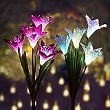 Swonuk Lumiere Solaire Jardin, Décoratives Pour Extérieur Fleurs 2 Pack Exterieur...