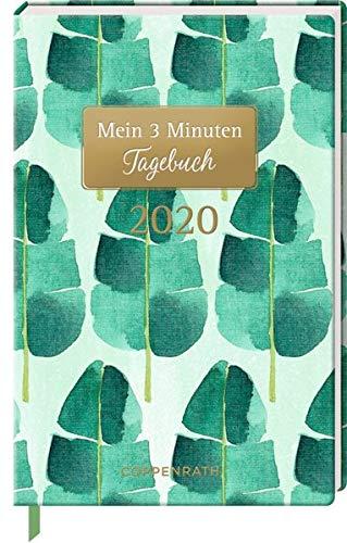 Mein 3 Minuten Tagebuch 2020 (Palmenblätter) (Jahreskalender)