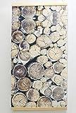 FRANK FLECHTWAREN Wandbild Birkenstämme