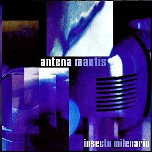 Antena Mantis