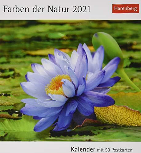 Farben der Natur Postkartenkalender 2021 - Tischkalender mit Wochenkalendarium - 53 perforierte Postkarten zum Heraustrennen - zum Aufstellen oder Aufhängen - Format 12 x 15 cm