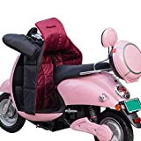 Cubierta de la Pierna de Invierno for Scooters Lluvia Viento Protector frío Rodilla Motocicleta Manta Knee cálido cálculo de Pierna Impermeable Acolchado (Color : A)