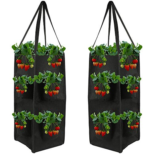 LoveStory 2 Pack 10 Gallons Strawberry Planting Bags with Handle,Garden Vegetable Planting Bag with 8 Pocket Non-woven Gardening Cultivation Container for Stawberries Herbs Flowers
