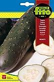 Semillas Fitó 240 - Semillas de Pepino Negrito
