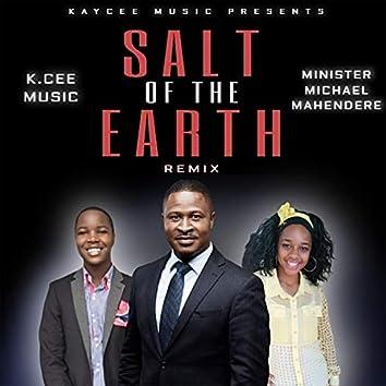 Salt Of The Earth (K.Cee Remix)