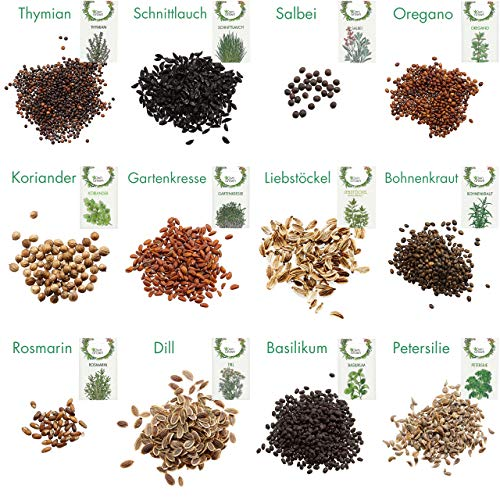 Kräuter Samen Set von OwnGrown, 12 Sorten Küchenkräuter als praktisches Kräutersamen Set, Gewürzsamen und Kräuterset für Küche und Balkon, 12er Box - 2