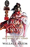 Eagle in the Snow by Breem, Wallace (2004) Paperback