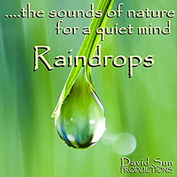 Raindrops (The Sounds of Nature for a Quiet Mind)