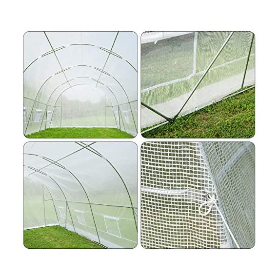 MELLCOM 20' x 10' x 7' Greenhouse Large Gardening Plant Hot House Portable Walking in Tunnel Tent, White 7 【8 ROLL-UP SIDE WINDOWS】-The green house eight roll-up windows have mesh netting to allow for cross ventilation and climate control. 【HEAVY DUTY STEEL FRAME】-Walk-in Garden Greenhouse solid steel construction with a galvanized finish, which is resistant to rust, chipping, and peeling. 【TRANSPARENT PLASTIC COVER】-The tough, durable and transparent PE plastic cover protects plants while allowing nourishing sunlight to pass through. The cover can be easily attached to the frame with the included tethers and single-sided tape.