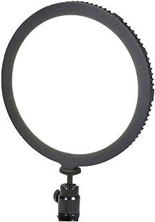 Dörr foto och video SL-300 softlight med 40 LED (2 400 lx/50 cm, steglös dimbar, färgtemperatur 5 600 K inkl. NP-F550 Li-I...