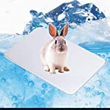 Small Animal Cooling Pad, Summer Ice Bed Chiller for Keeping Pets Cool, 3 Sizes Cooling Mat for Kitten, Rabbit, Bunny, Guinea Pigs, Hamster, Chinchilla and Other Pets