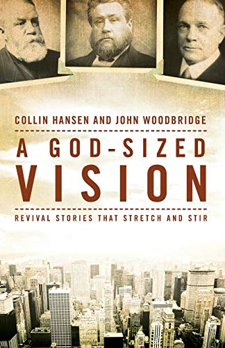 God-Sized Vision, A: Revival Stories that Stretch and Stir