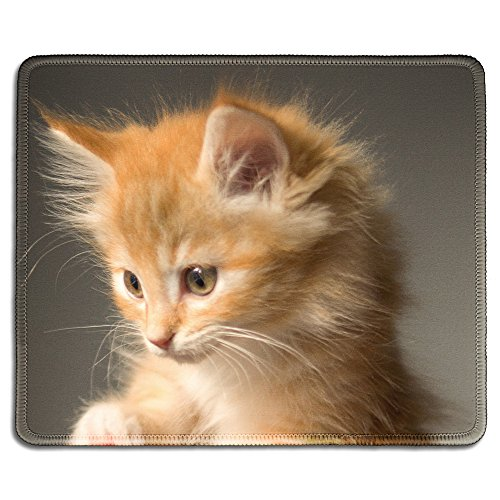 dealzEpic - Animal Art Mousepad - Natural Rubber Mouse Pad Printed with A Fluffy Cute Kitty - Stitched Edges - 9.5x7.9 inches