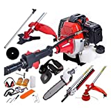 Dealourus 2020 52cc 5 in 1 Long Reach Petrol Multi Functional Garden Tool Including: Strimmer, Hedge Trimmer, Pruner Chainsaw, Brush Cutter & Extension Pole …