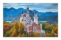 500/1000/1500ピース大人向けの有名な建築ジグソーパズル-木材環境保護(ノイシュヴァンシュタイン城、ドイツ) BBJOZ (Size : 1000pcs)