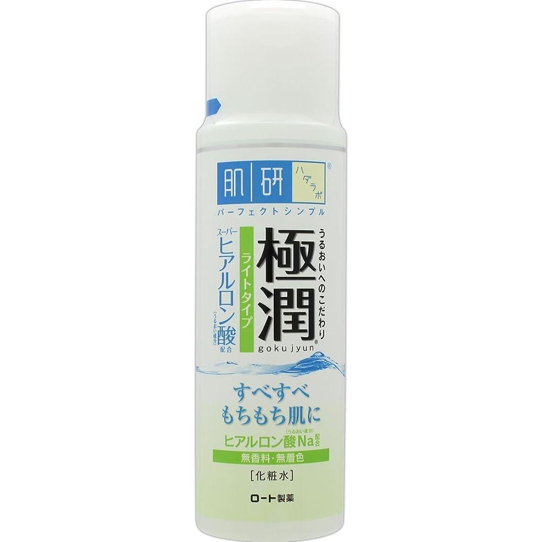大宇宙乱れ花瓶肌研(ハダラボ) 極潤 ヒアルロン液 ライトタイプ 170mL