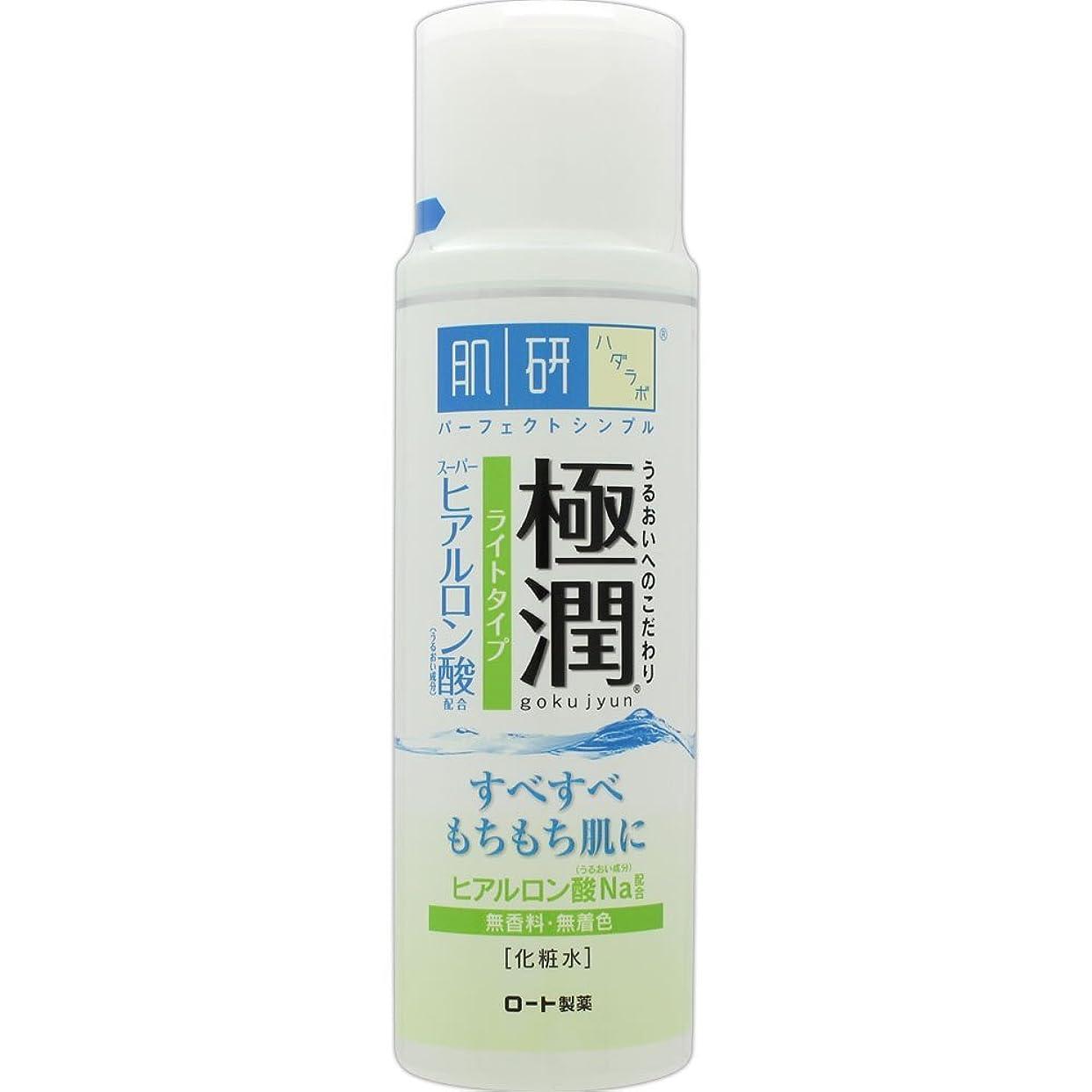 離婚闘争資格肌研(ハダラボ) 極潤 ヒアルロン液 ライトタイプ 170mL