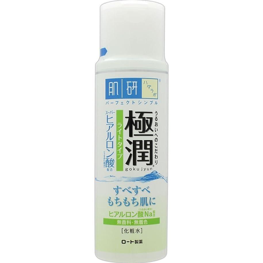 低いの頭の上床を掃除する肌研(ハダラボ) 極潤 ヒアルロン液 ライトタイプ 170mL
