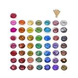 50 Colorante para Resina Epoxi Metalizados Pigmentos polvo para Hacer Slime lápiz labial Bomba de Baño Jabón Hacer Velas DIY Manualidades Pintura Hacer Velas (50 Colores, 3 g)