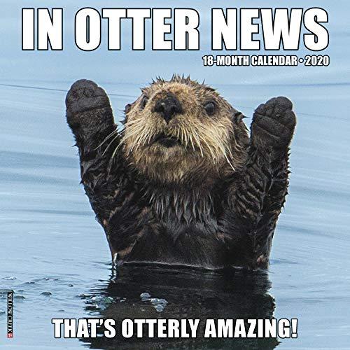 Willow Creek Press: In Otter News 2020 Wall Calendar