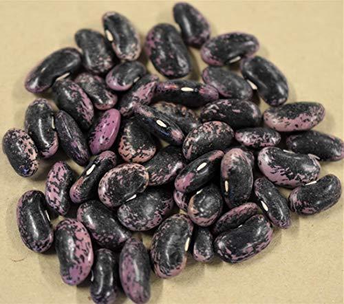 50 g Feuerbohne Prunkbohne Rankendebohne rote Bohne Samen Saatgut