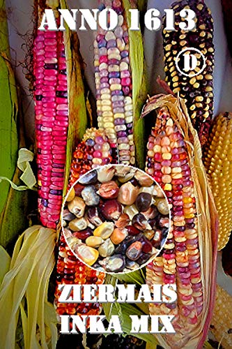 Thysanotusversand Ziermais Inka Mix 70 Samen