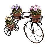 JXINGY Soporte para Plantas de Flores Triciclo para Bicicletas, Soporte para...