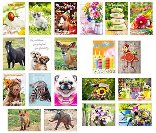 Set di 20 biglietti di auguri di compleanno con busta (animali di cane e gatto), biglietto di auguri di compleanno per uomo e donna (doppio biglietto pieghevole)