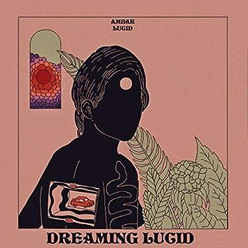 Dreaming Lucid