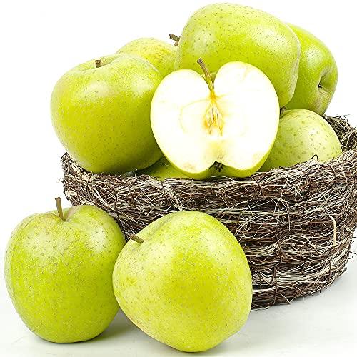 国華園 りんご 青森産 王林(10kg)26〜50玉 ご家庭用 林檎 青りんご おうりん フルーツ 果物