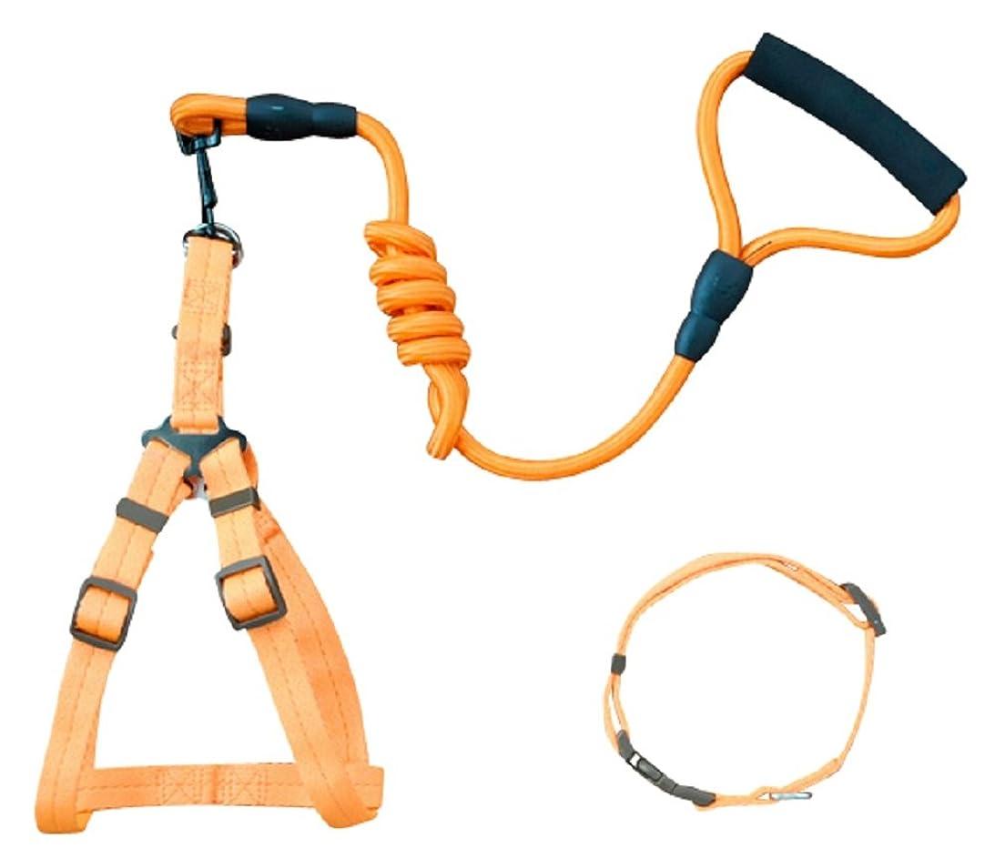 再生可能スロープ世論調査(DauStage) 7カラー 4サイズ 犬用 首輪 ハーネス リード セット オリジナルトートバッグ付き (S, オレンジ)