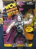 WCW Sting Wrestling Action Figure WWF WWE