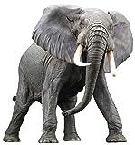 メガソフビアドバンス アフリカゾウ フィギュア