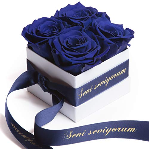 ROSEMARIE SCHULZ Heidelberg Rosenbox mit Infinity Rosen Blau - konservierte langlebige Blumen Partner (Seni Seviyorum, Blau)